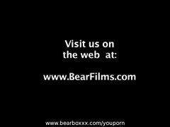 bear instincts 8
